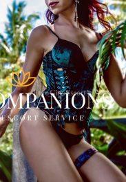 Roxanne , agency Top Companions